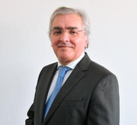 M. Mendes Ferreira